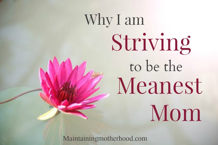 Are you a mean mom? Want to know how you can be? Find out What you can do by reading about how I am striving to be the meanest mom.