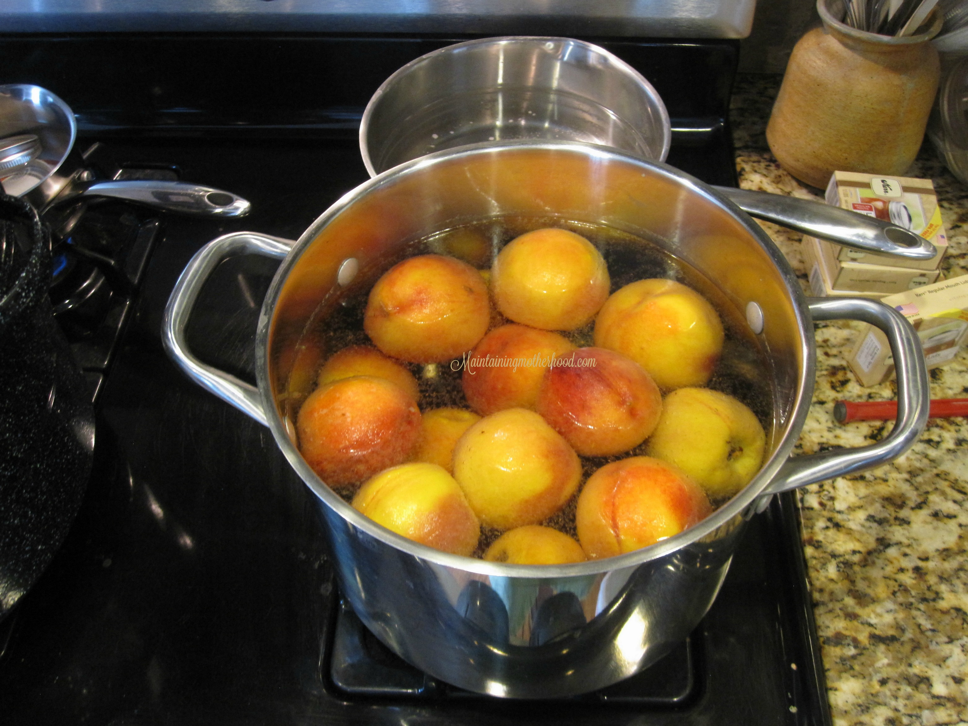 Want to savor the taste of summer all winter long? Enjoy canned peaches even after peach season. Learn how to can peaches In 10 simple steps.