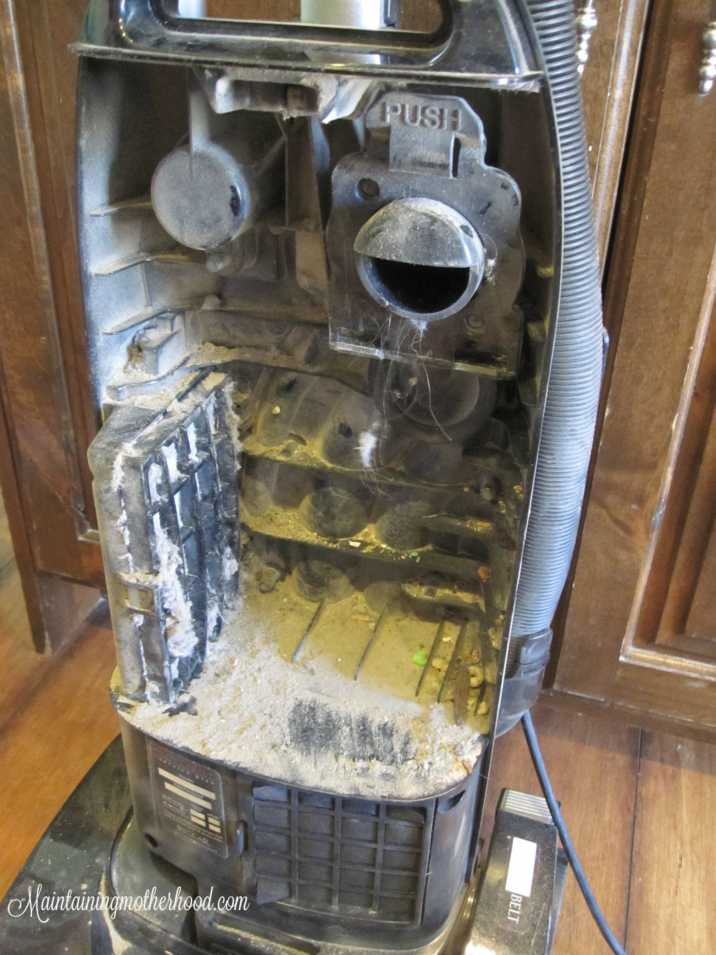 Does your vacuum suck? If not, learn how to deep clean your vacuum: clean filters, unclog, and detangle the nasties. Increase the life of your vacuum!