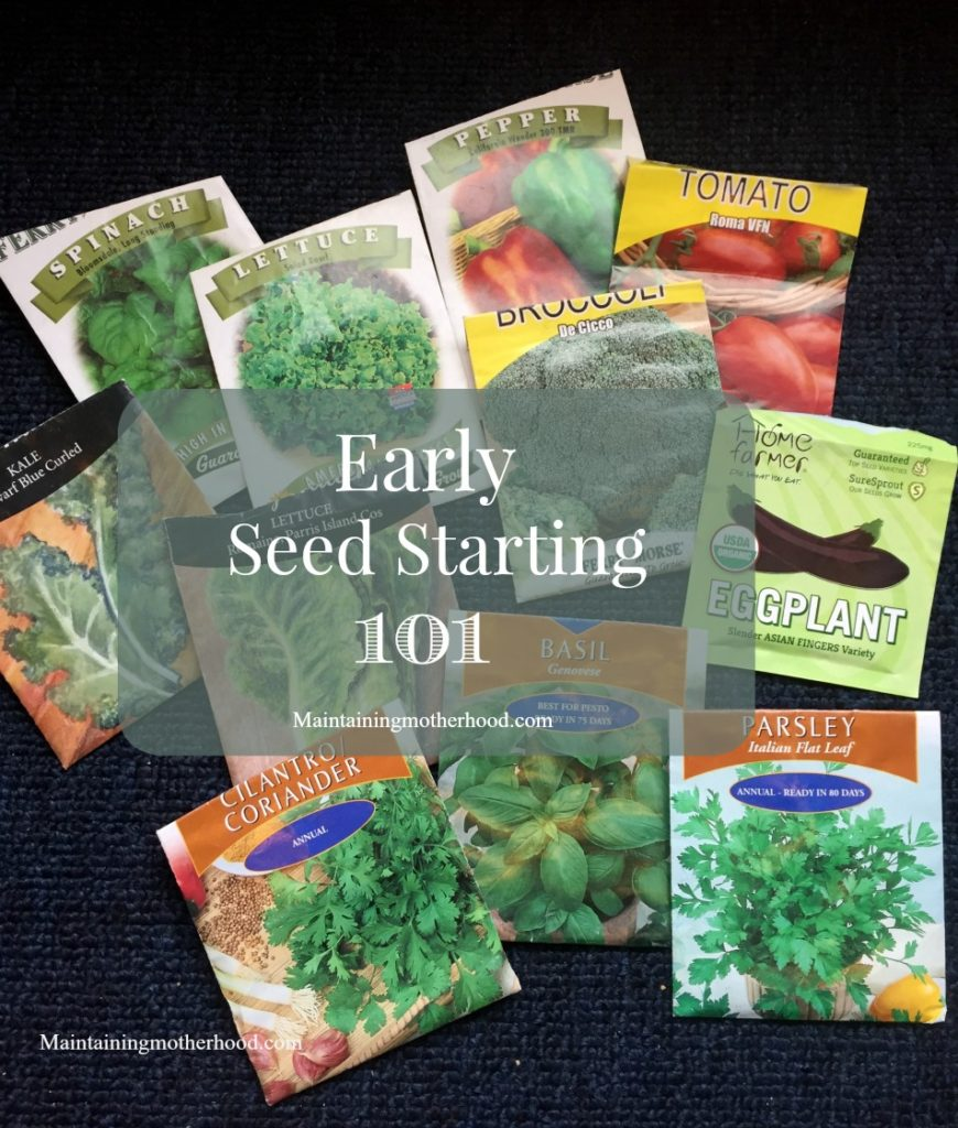 Is your gardening season short? With a few simple supplies you can try early seed starting  and have greenhouse beautiful plants for pennies!