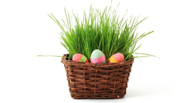 Looking for Easter ideas? Simple Easter traditions keep the holiday simple yet memorable for the whole family. Here are our 3 favorite traditions!
