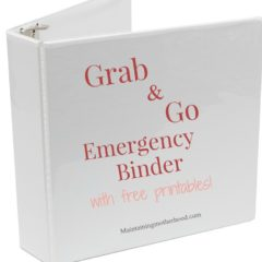 Grab and Go Emergency Binder