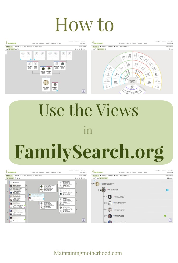 After you have connected to deceased ancestors in FamilySearch.org, what's next? Learn to use the views in FamilySearch.org to find your relatives!