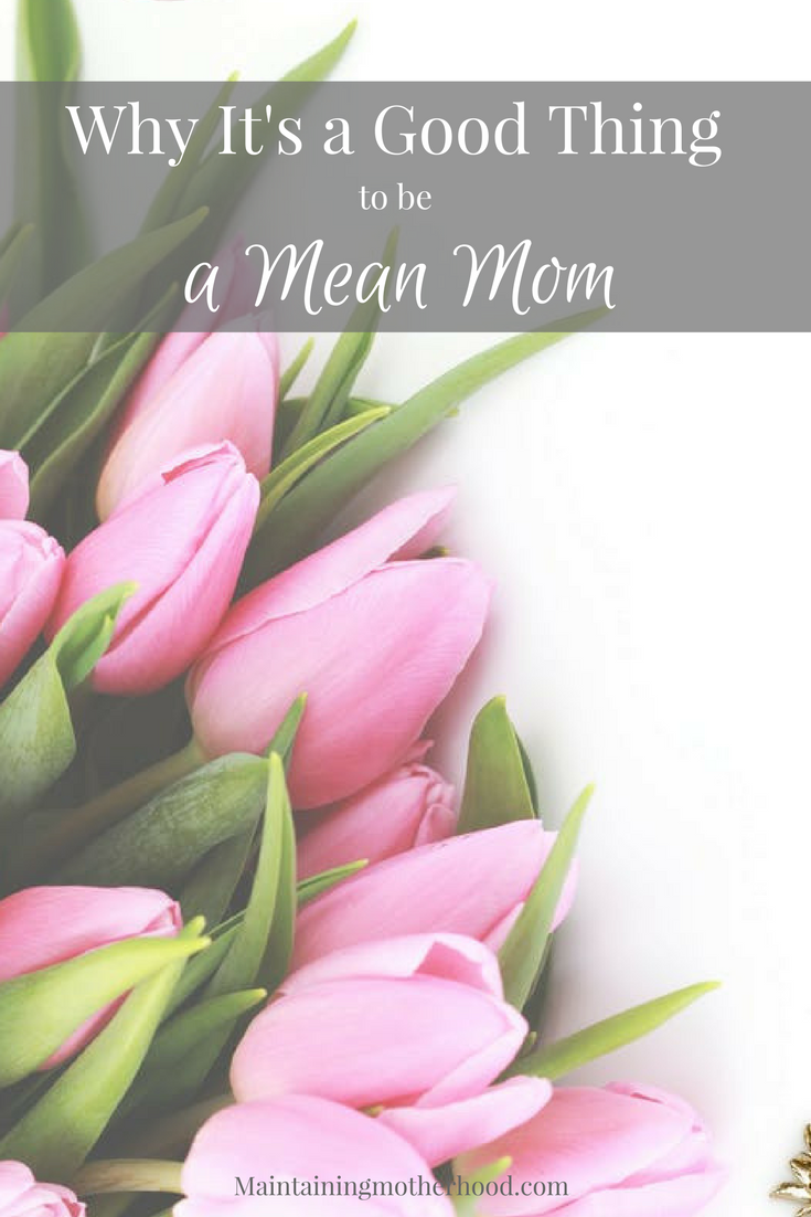 Do you ever feel like a mean mom? Find out why that's a good thing, and how you can embrace it as a strength to raise amazing kids!