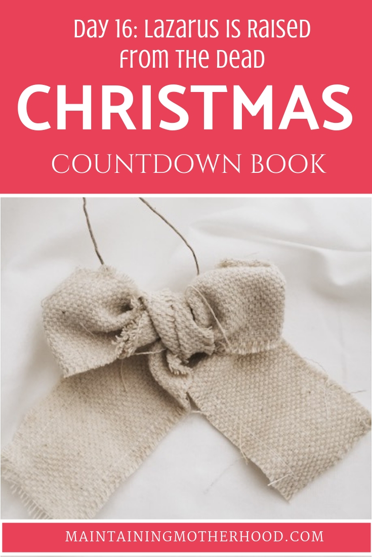 Christmas Countdown Book Day 16: Lazarus is Raised from the Dead. See the art, scripture, song, video, and ornament that help us remember Christ.