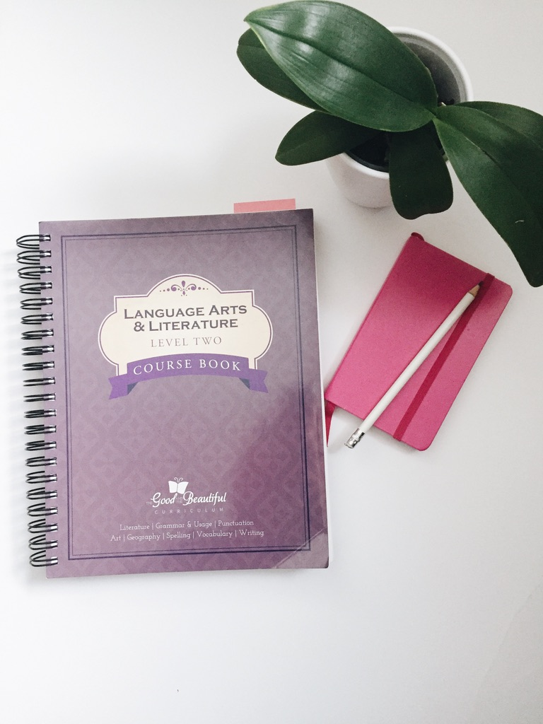 Thinking about homeschooling? Here are 5 tips to help you be successful right from the start! Insights on our schedule, organization, and curriculum!