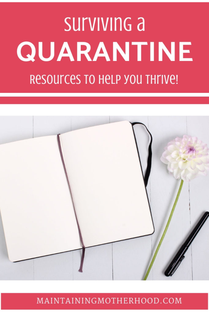 Are you under any degree of quarantine from the coronavirus? Help your family survive more comfortably by planning your time and supply purchases better!