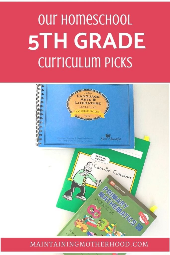 Wondering what we're using to teach 5th Grade this year? Here's our comprehensive list of curriculum picks for 5th Grade, 2020.